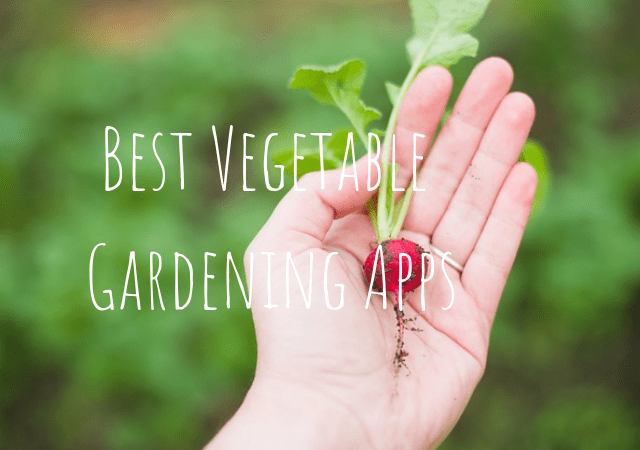 Best Vegetable Gardening Apps