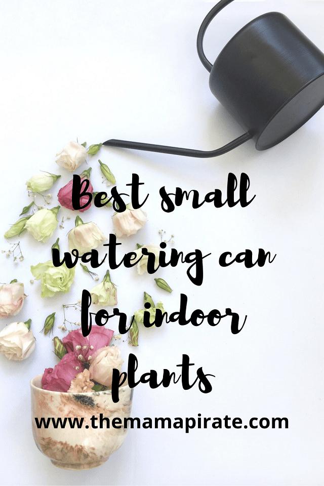 best small indoor watering can