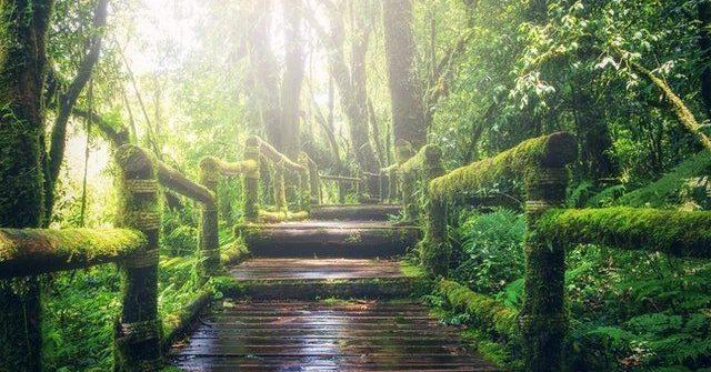 top botanical gardens in europe